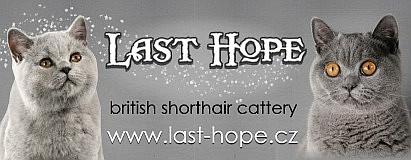 of Last Hope